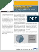 Metodologia SAP
