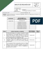 NATU-FOSST-007 MINUTA DE REUNION SST SST -2020-002