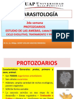 2 semana-parasitologia.pptx