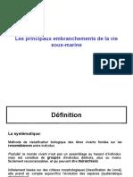 3_EB_Embranchements_Pour_Cours.ppt
