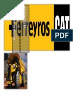 CASO FERREYROS