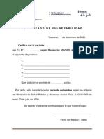 EJEMPLO DE CERTIFICADO DE VULNERABILIDAD
