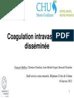 CIVDColmar18janvier2012V4 - Copie