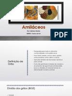 Matérias Primas - Amiláceos.pdf