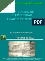 20101209-PresentacionGeneracionConBiomasa