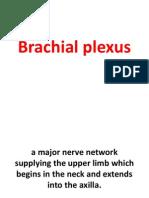 14-_Brachial_Plexus