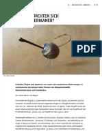 WOVOR_FURCHTEN_SICH_LATEINAMERIKANER_Lat (1).pdf
