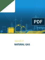 QER_AppendixB_NaturalGas.pdf