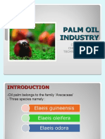 Palm Oil Industry (Jan09)