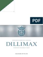 dillimax_information_technique_2007