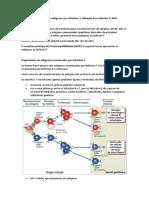 Moléculas do complexo principal de histocompatibilidade
