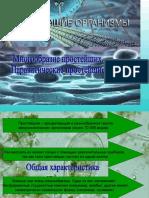 биология простейшие 8 класс пар.8 9.ppt