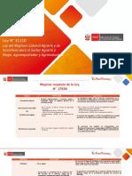 PPT Ley 31110 y proceso de Reglamento v2