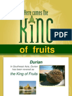 DurianFruitProperties