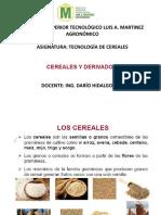 CLASE 2. ESTRUCTURA DE LOS CEREALES Y PROPIEDADES FÍSICOS QUÍMICAS. (9)