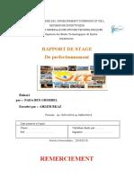 rapport-VLT.docx
