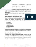 Motor Monofásico - Breve Resumo