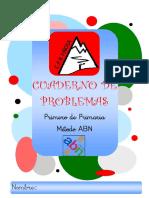 CUADERNO PROBLEMAS ABN.pdf