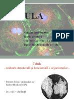 celula, compoziția chimică