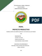 PROYECTO PRODUCTIVO.docx