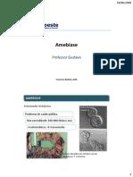 Aula 8 - Amebíase.pdf