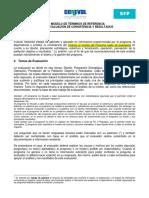 5_1_tr1_modelo_de_terminos_de_referencia_para_la_evaluacion_de_consistencia_y_resultados.pdf