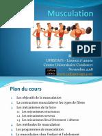 CM Musculation L2 2017.pdf