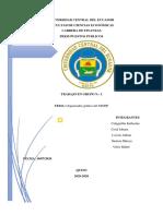 SINFIP (organizador gráfico) REVISADO.pdf
