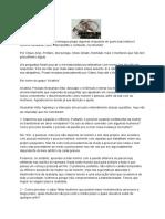 entrevista com Nessahan Alita.pdf