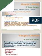 10. Hongos_y_Plantas