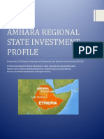 Amhara-Major Investment Opportunities