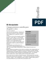 2242353-El-Discipulado