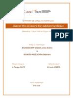 Rapport_de_stage_X2_Joress_BADIENGUISSA _ v2.pdf