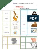 Animaux - Lexique