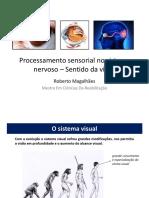 Sentido da Visão.pdf