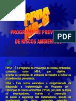 PPRA - Programa de Prevenção de Riscos Ambientais - 02595 [ E 2 ]