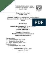 LAB DE PSICOLOGIA PRACTICA 3