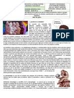 FILOSOFIA-ERE-ARTISTICA_10°_julio