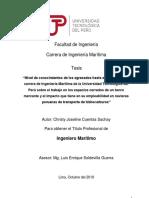 Christy Cuentas_Tesis_Titulo Profesional_2019