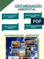 diapositivacontaminacionambiental-090512170559-phpapp02-converted