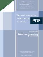 Temas de Pesquisa em Ciência da Informação no Brasil