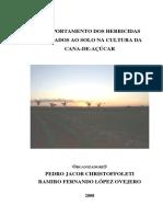 1 - Livro Christoffoleti - comportamento herbicidas no solo em cana