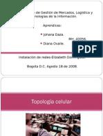 Topología celular