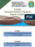 1_Ecologia - Interações bióticas e abióticas - Pegada ecológica - cicos biogeoquimicos-convertido