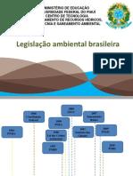Legislação Ambiental Brasileira e  poluição