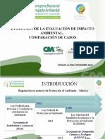 Presentación AMIA Velasco Mejía Alba