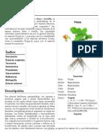Fragaria - Wikipedia, la enciclopedia libre