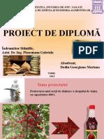 PROIECT DE DIPLOMĂ buun