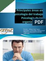 3. Principales áreas en psicología del trabajo - Psicología de las organizaciones.1000