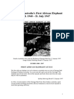Dumbo Australias First African Elephant